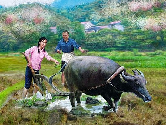乡村振兴文化墙绘